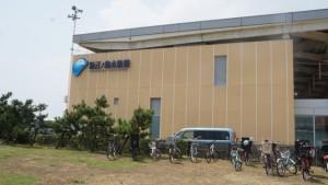 新江の島水族館 (2)